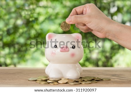 hand's women putting golden coins in Piggy bank. account concept,savings  concept,planning concept. - stock photo