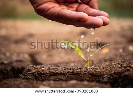 Hand watering the ground barren - stock photo