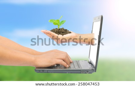 hand with a tree and laptop concept online on nature background - stock photo
