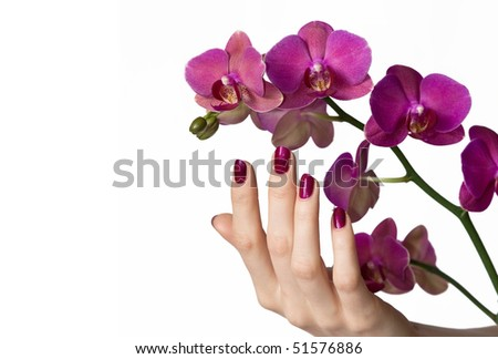 Hand with beautiful pink manicure touching purple orchid - stock photo