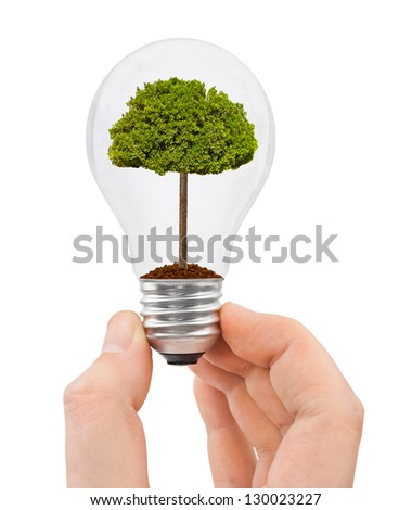 Hand with bulb and tree isolated on white background - stock photo