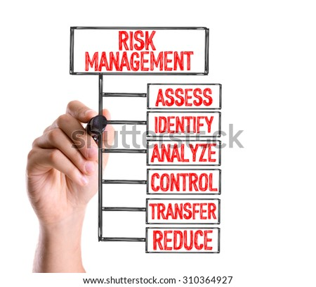 Risk Management and Insurance writing a senior paper