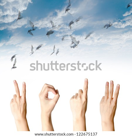 hand with new year 2013 abstract with doves flying on blue sky and cloud background - stock photo