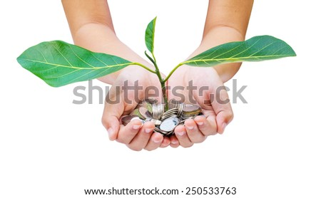 Hand with tree  from pile of coins white background - stock photo