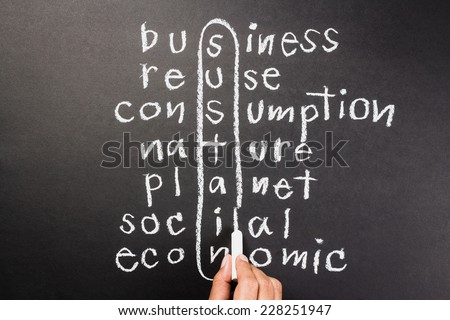 Hand writing Sustainable Development concept in crossword with chalk - stock photo