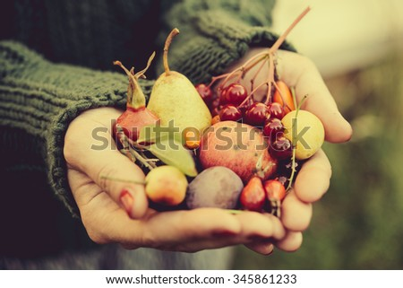 Handful of autumn berries and fruits. Toned image - stock photo