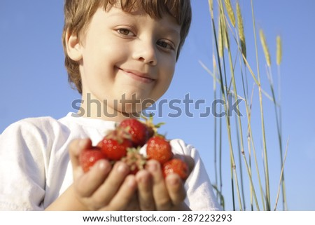 handful of strawberry in the hands of the boy - stock photo