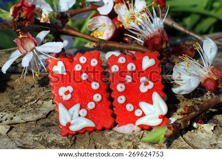 Handmade clay earrings with apricot blossom in spring on the nature background - stock photo