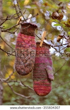 Handmade mittens hanging on a tree - stock photo