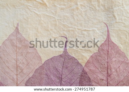 handmade paper background with leaves - stock photo