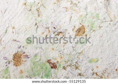 Handmade paper with dry flowers - stock photo