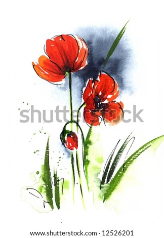 Handpainted floral watercolor illustration: poppie flower and gras in front of blue sky isolated on white.Art is created and painted by photographer. - stock photo
