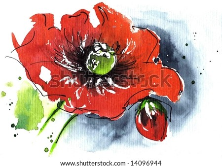 Handpainted floral watercolor illustration: Red poppie flower and blue isolated on white.Art is created and painted by photographer. - stock photo