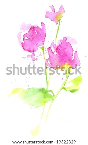 Handpainted watercolour roses on white. Painted and created by photographer. - stock photo