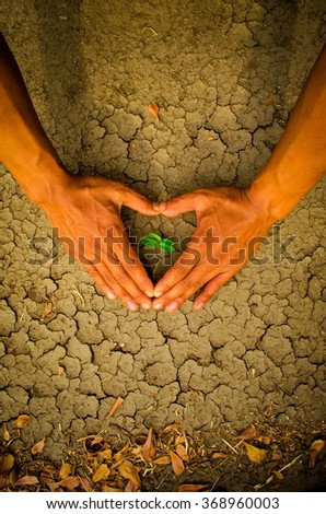 Hands forming a heart shape around a tree growing on cracked ground - stock photo