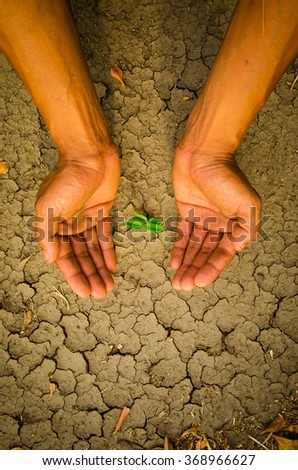 Hands forming shape around a tree growing on cracked ground - stock photo
