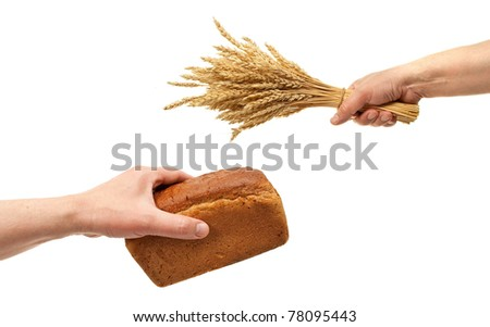 Hands hold bread and wheat ears - stock photo