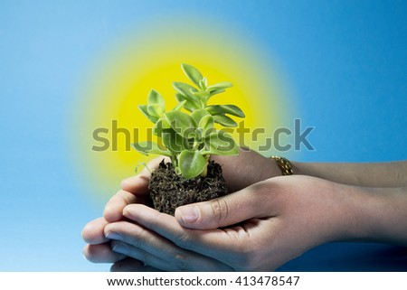 hands holding a plant with a blue background and sun glow in the center - stock photo