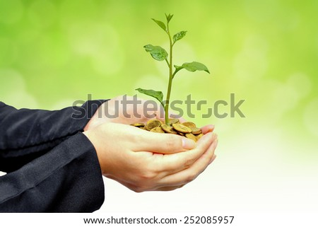 hands holding a tree growing on golden coins with green background - business with csr practice  - stock photo