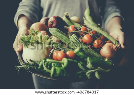 Hands holding big plate with different fresh farm vegetables. Autumn harvest and healthy organic food concept. Toned picture - stock photo