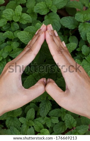 Hands holding heart shape - stock photo