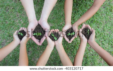 Hands holding sapling in soil surface (blur) - stock photo
