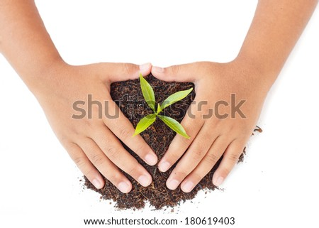 hands holding soil and young plant. Ecology concept - stock photo