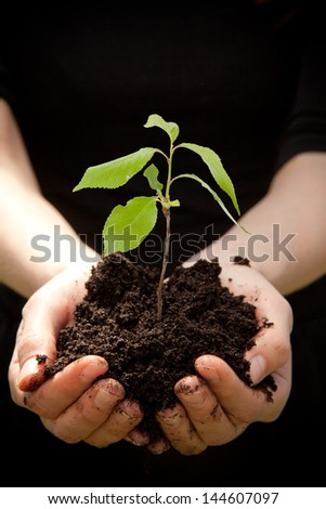 Hands holding young green plant, on black background - stock photo