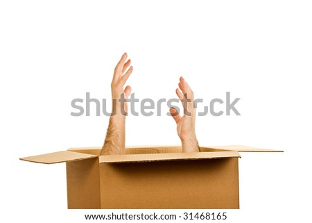 Hands inside of the cardboard box - stock photo