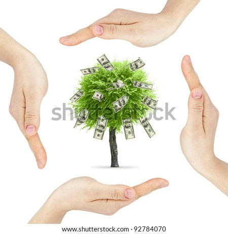 Hands made circle with money tree in center isolated on white background - stock photo