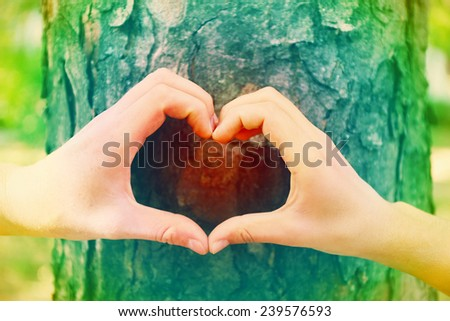 Hands making heart shape frame in front of tree - stock photo