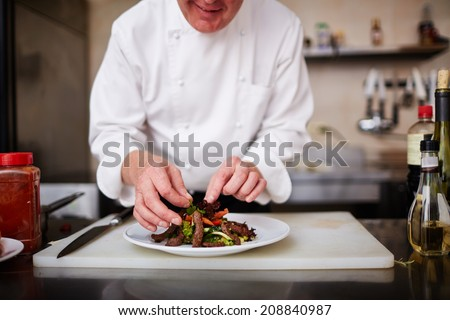 Hands of male chef decorating salad with herbs - stock photo