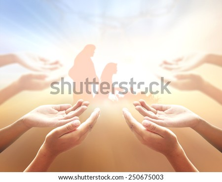 Hands of men praying over blurred nativity story. - stock photo