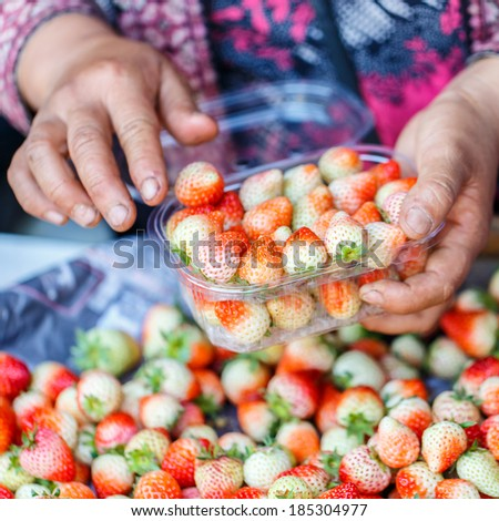 Hands packing of strawberry with blurred background - stock photo