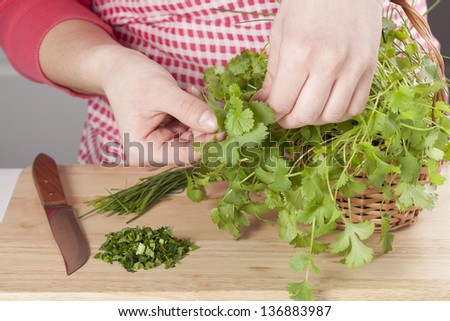 Hands picking fresh harbs from a wicker - stock photo