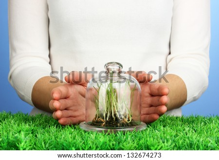 Hands protect grass under glass cover - stock photo