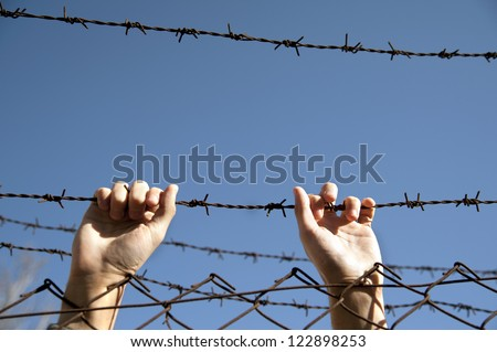 hands reach toward freedom through the barbed wire - stock photo