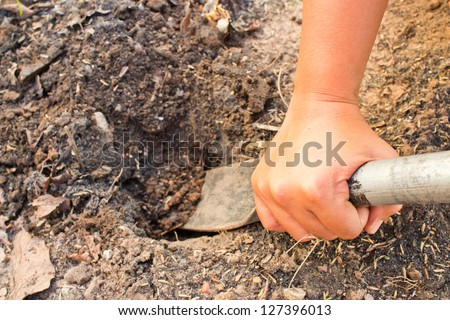 Hands were digging with spades. - stock photo