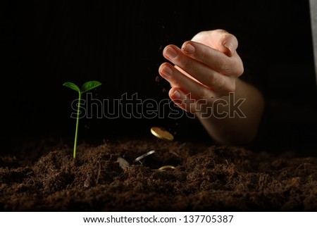 Hands with plant and money  - stock photo