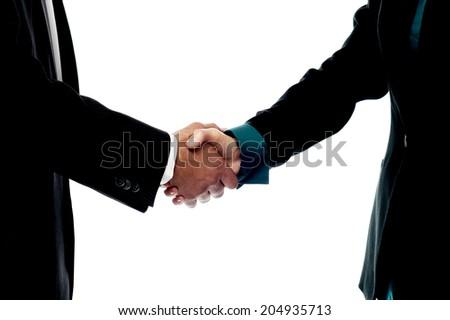 Handshake, hand holding on white background - stock photo