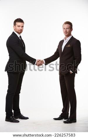 handshake of two businessmen - stock photo