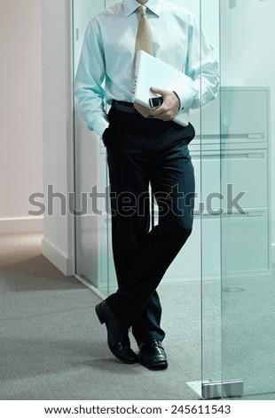 Handsome businessman working - stock photo