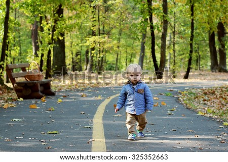 Handsome toddler walking forward along the road in the autumn park - stock photo