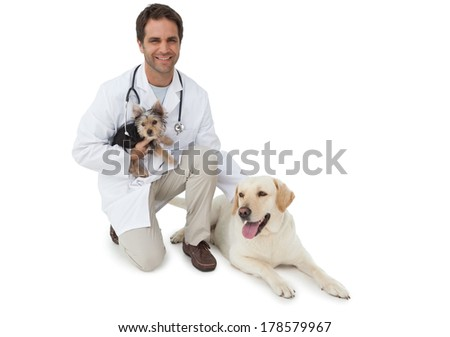 Handsome vet posing with yorkshire terrier and yellow labrador on white background - stock photo