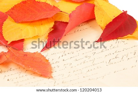 handwritten old letter with color autumn leaves - stock photo