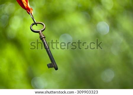 Hanging key - coaching and mentoring symbol - stock photo