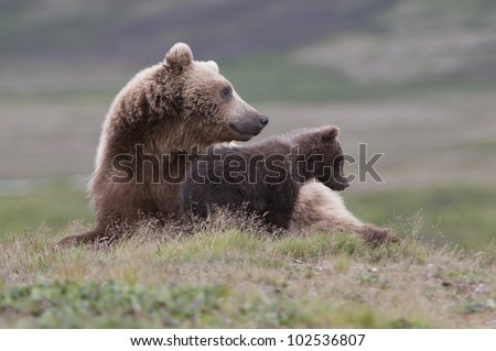 Hanging out with Mom - stock photo