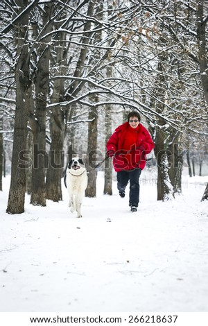 Happy adult women jogging with big white dog in winter snowy woods; pedigree shepherd Alabai - stock photo