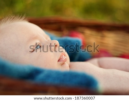 Happy baby boy lying in the basket with apples in nature - stock photo