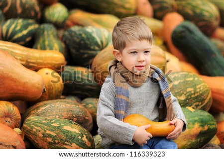 Happy child is sitting on a mountain of pumpkins. Sunny autumn day - stock photo